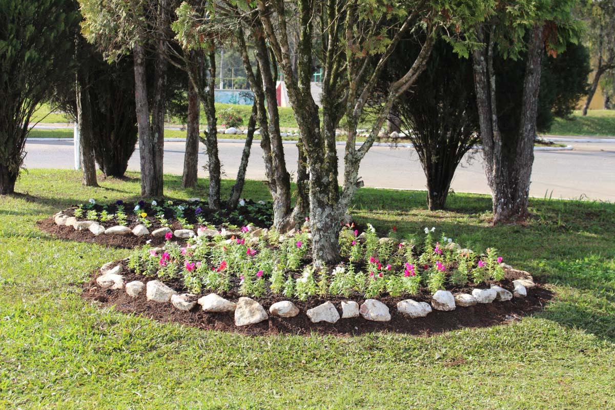 Plantio de flores embeleza a cidade de Três Barras